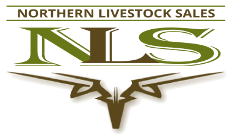 Northern Livestock Sales Logo